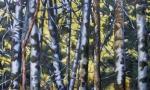 Forest_Light